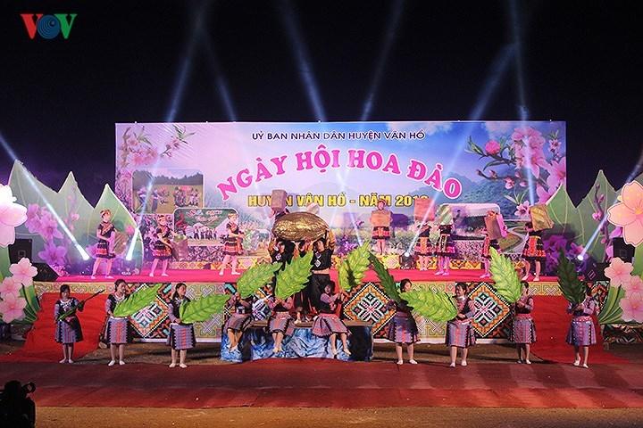 Ngày hội Hoa đào tại Vân Hồ 'thiên đường hoa vùng Tây Bắc'